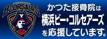 かつた接骨院は横浜ビー・コルセアーズを応援しています。 style=